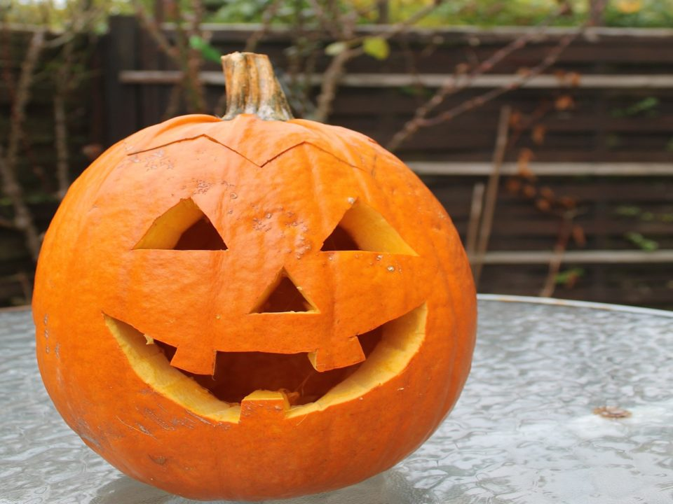 Spooky Good Fun Things to Do in Wake Forest NC | Holding Village Community